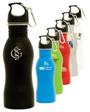 Curve 19 oz. Steel Water Bottle