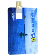 Eastwood Credit Card Sized USB 2.0 Flash Drive